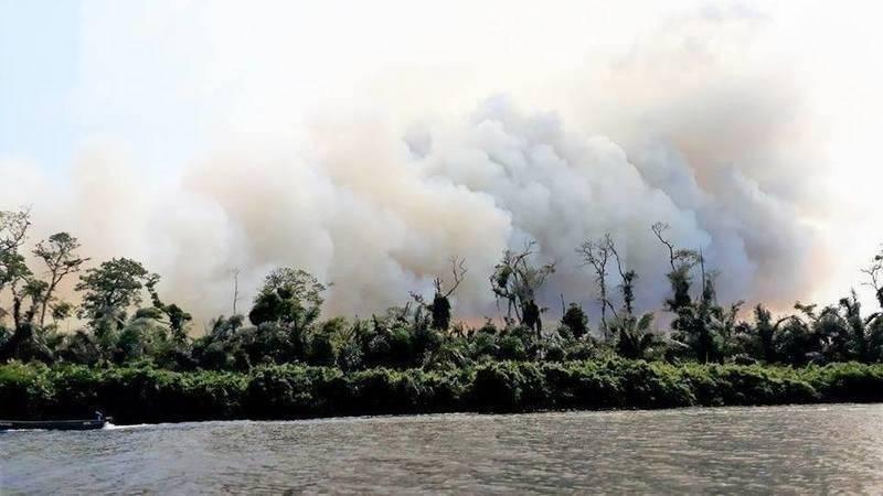 ¿Qué está pasando en Nicaragua? 5.000 hectáreas arrasadas en 7 días y tod..