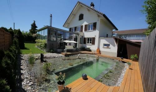 Una familia construyó una piscina natural en el patio de su casa