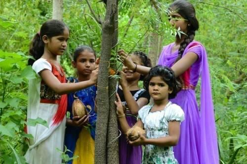 Descubre por qué este pueblo planta un bosque cada vez que nace una niña
