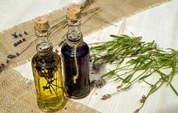 Tintura madre: el poder de las plantas medicinales en gotas