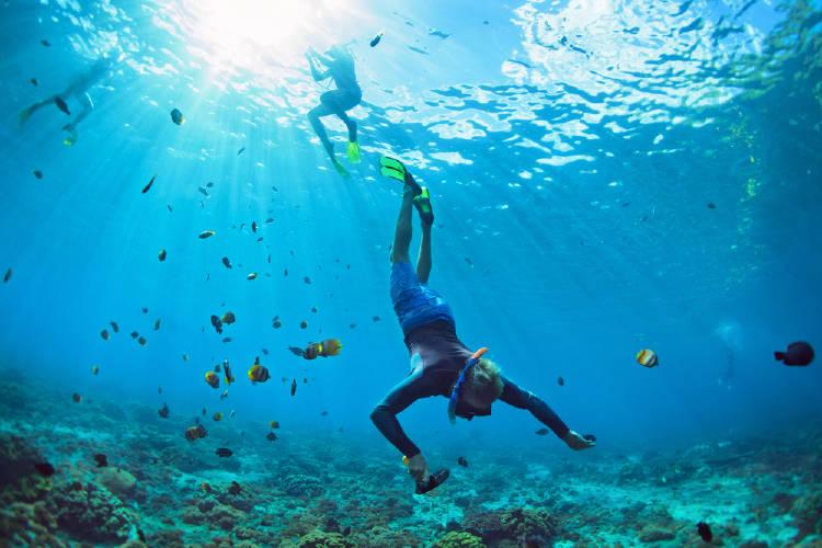dos personas practican buceo en una de las islas de las bahamas, rodeados de peces, corales y aguas cristalinas