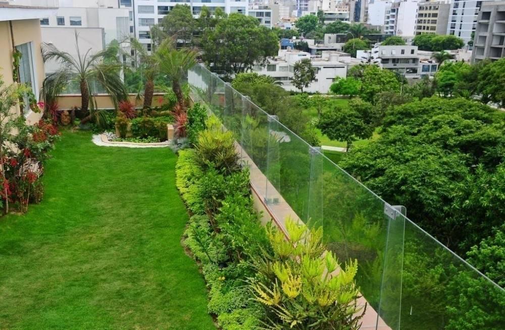 Techos verdes: una alternativa que suma adherentes