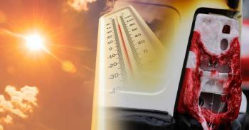 Calor récord en el mundo