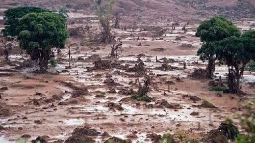 Este es el peor ataque al Amazonas en casi 50 años y casi nadie está habland..