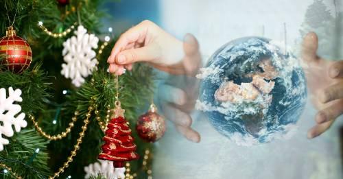 ¿Qué tipo de árbol de navidad es más amigable con el planeta?