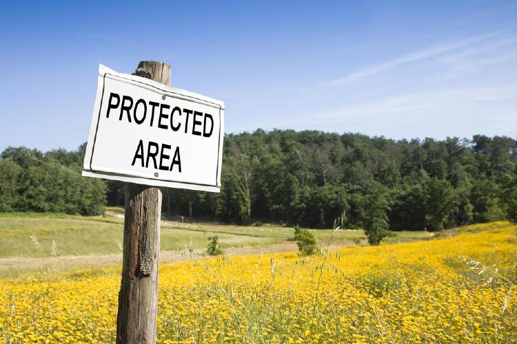 area protegida cartel