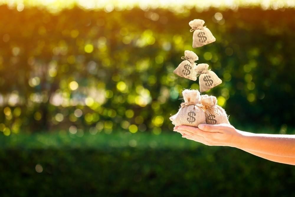 Ambientalismo de libre mercado: cuando la sostenibilidad depende de las leyes de