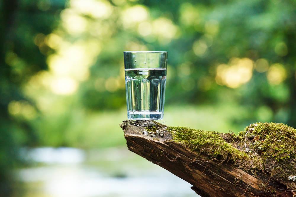 Del vaso de agua a proteger cuencas: el camino de un emprendimiento social