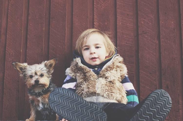 perro con un niño
