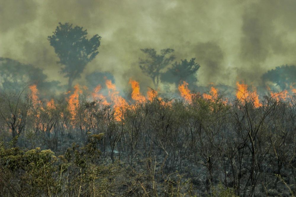 Continúa ardiendo el humedal más grande de Latinoamérica