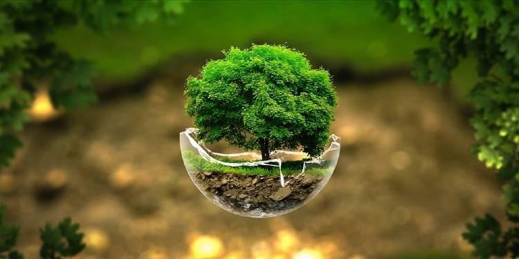 6 hábitos para vivir el desarrollo sostenible