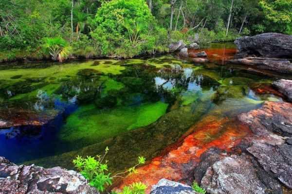 rio caño de cristales (3)