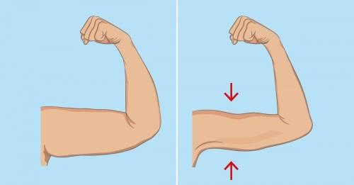 5 ejercicios para adelgazar y moldear los brazos sin ir al gimnasio