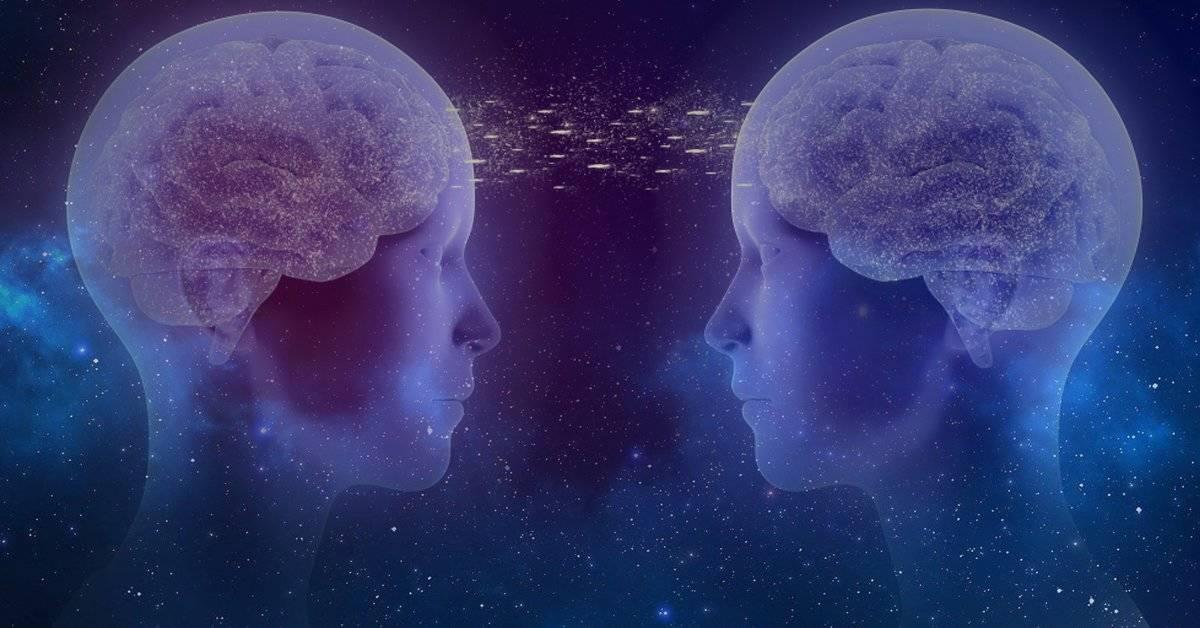 Científicos crearon el primer sistema de la historia capaz de compartir pensamientos entre cerebros