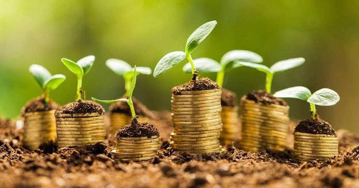 El ritual de las 7 lentejas para ayudar a atraer la prosperidad a tu vida
