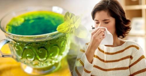 12 infusiones para combatir los síntomas de la gripe