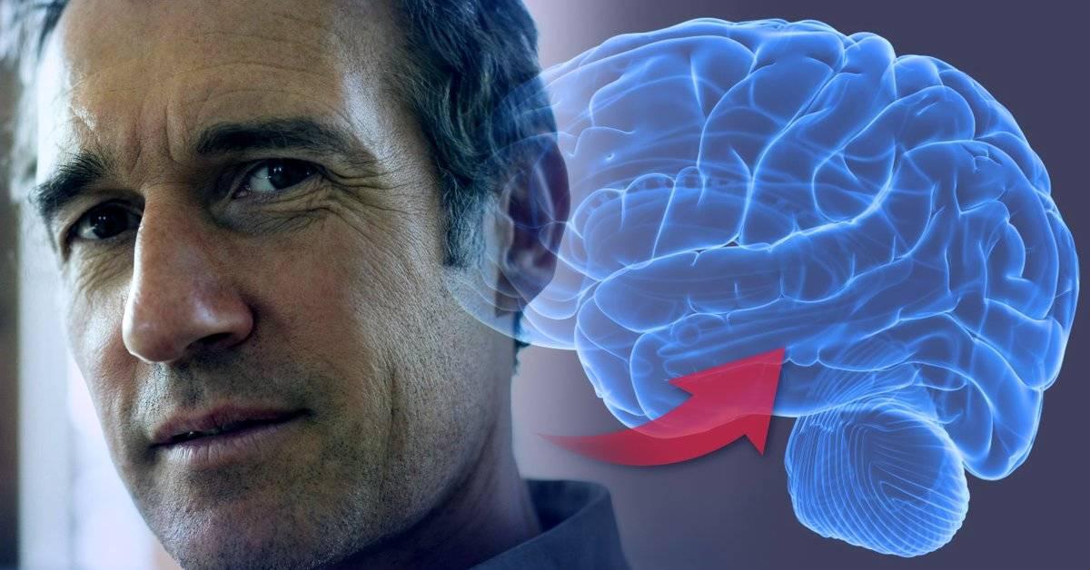 ¿Qué pasa en el cerebro cuando cumplimos 50? La respuesta te volverá optimista