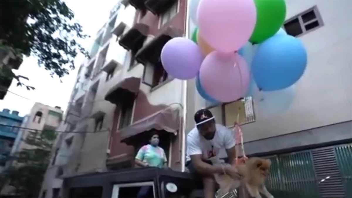 ¡Indignante! Youtuber fue arrestado por hacer volar a su perro atado a globos de helio