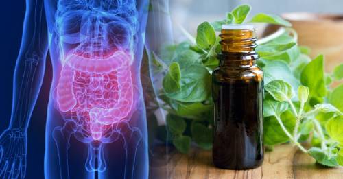 """Cómo hacer un aceite natural para eliminar las bacterias """"malas"""" de tu cuerpo"""