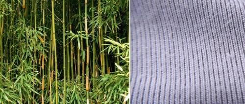 El bambú es la fibra que puede revolucionar el mundo de la moda
