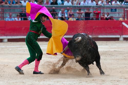 La Unesco excluye la tauromaquia como patrimonio de la humanidad