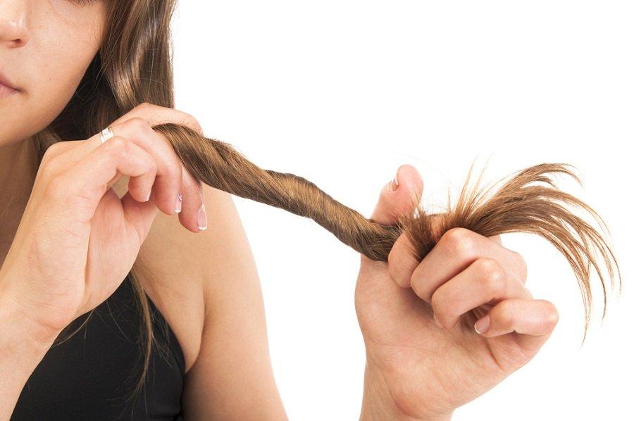 cabello pelo