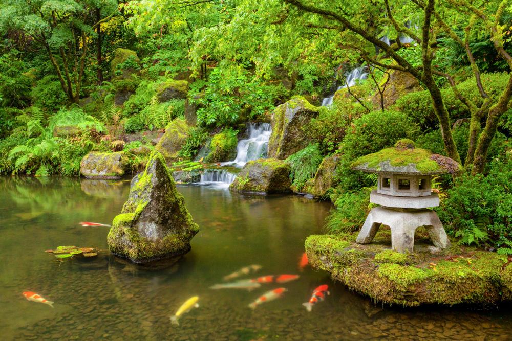 Jardinería japonesa: técnicas para aplicar en casa