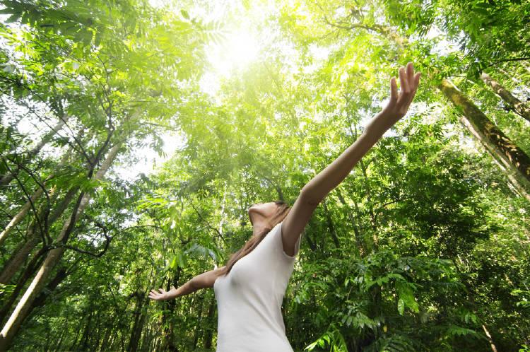 mujer abre sus brazos en un bosque conectando con la naturaleza