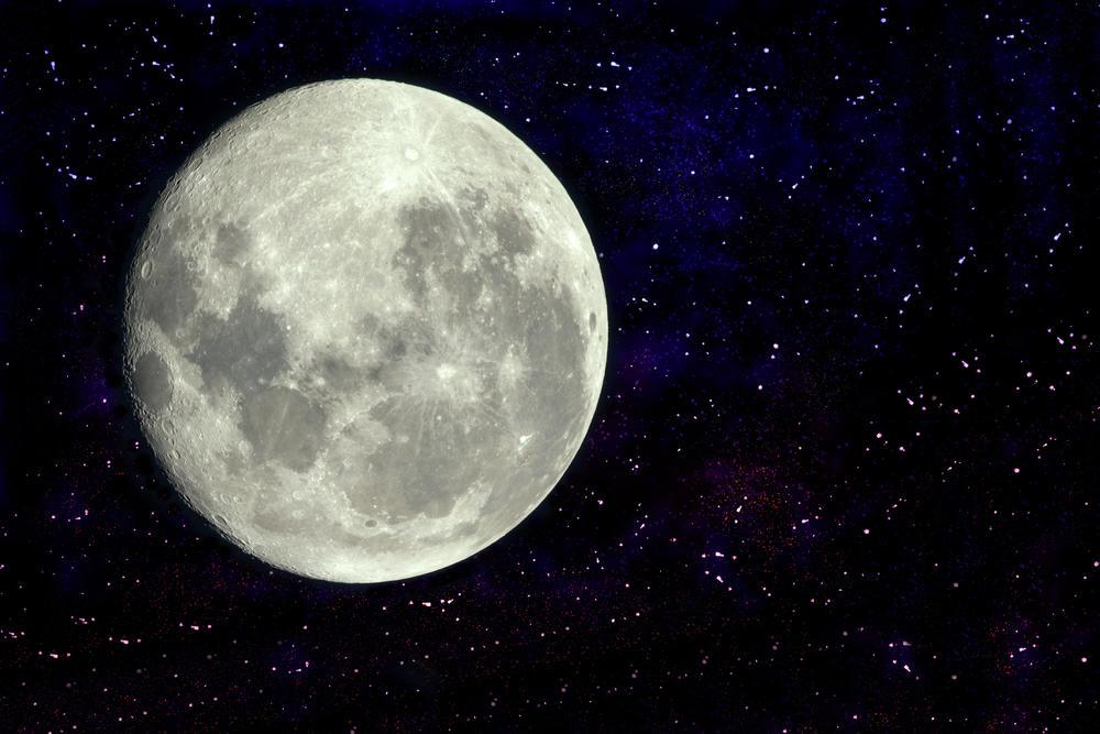 Conoce todos los detalles del plan de la NASA para criar peces en la Luna