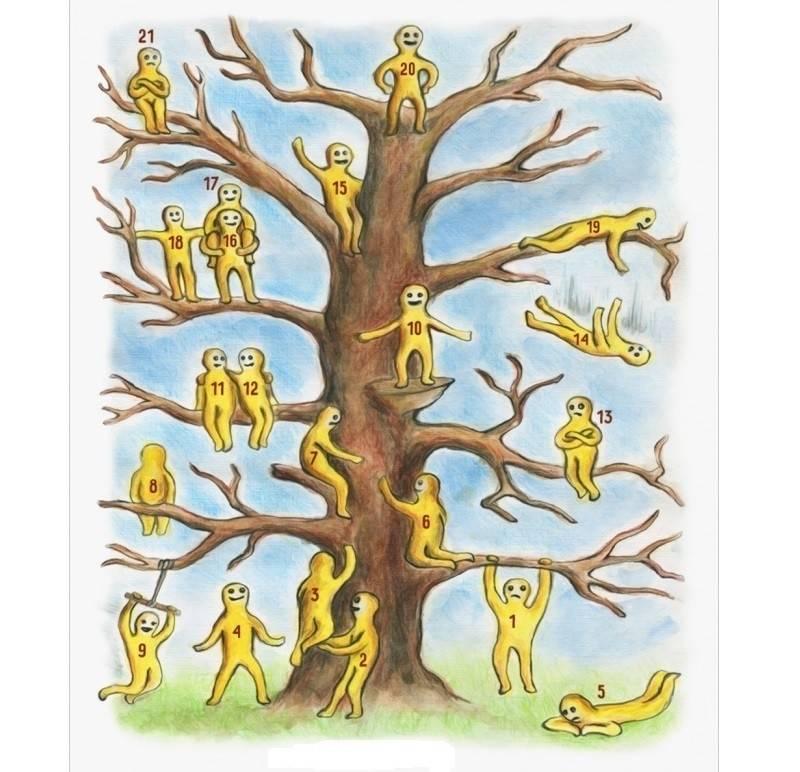 Test: ¿En qué sitio del árbol te encuentras?