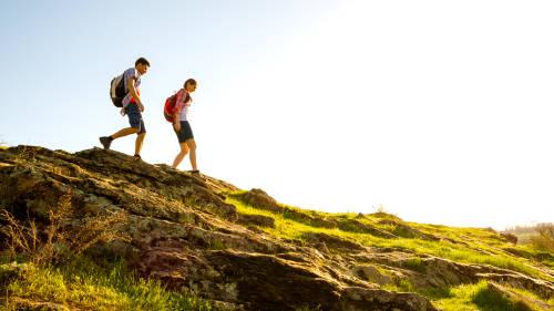 Planifica tu voluntariado ambiental para el verano del 2021
