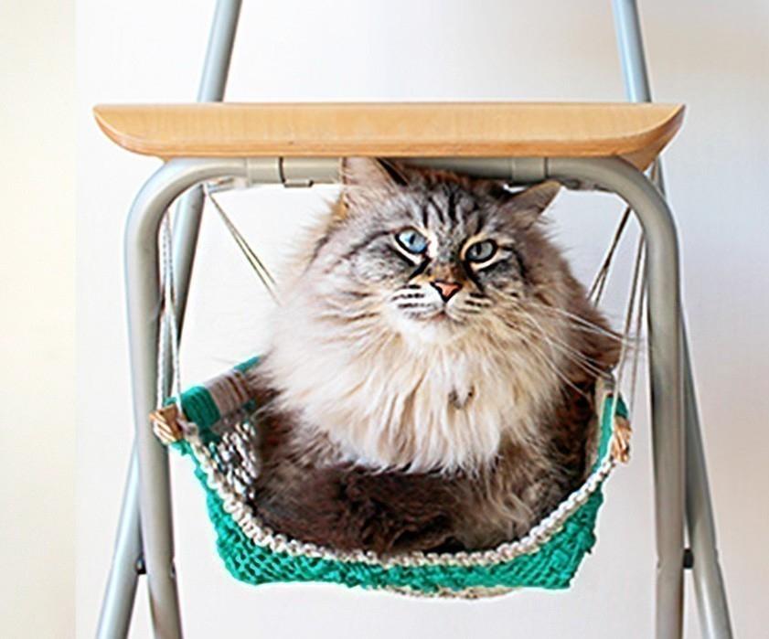 Cómo hacer una hamaca para tu gato