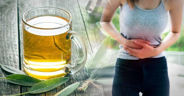 mejores-bebidas-naturales-gastritis