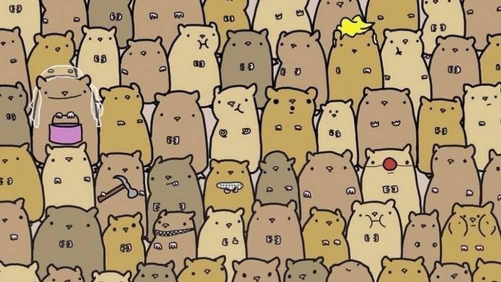 ¡Rápido! ¡Encuentra la patata escondida ente los hámsters!