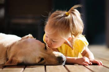 Una niña le da un beso a un perro