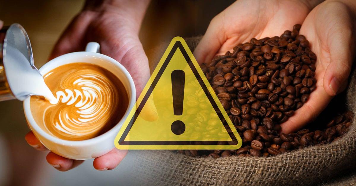 Alertan que las especies más populares de café están en peligro de extinción