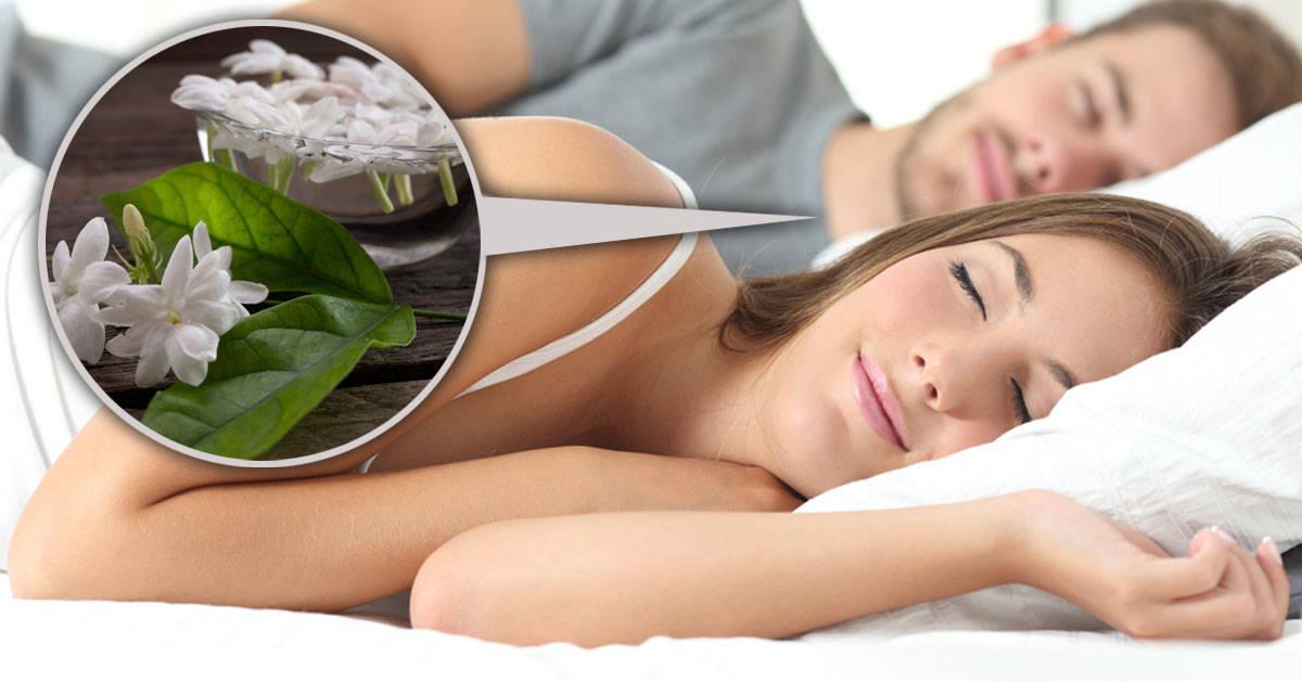 Por qué tener jazmín en el dormitorio puede mejorar tu vida