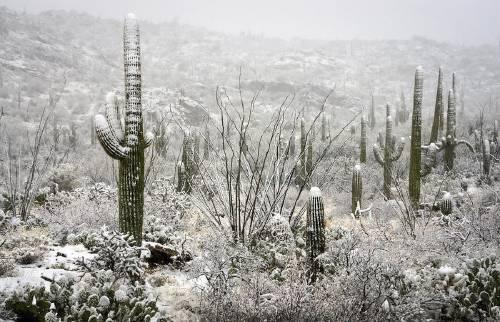 Lo que hay detrás del frío extremo: ¿por qué está nevando en los lugares ..