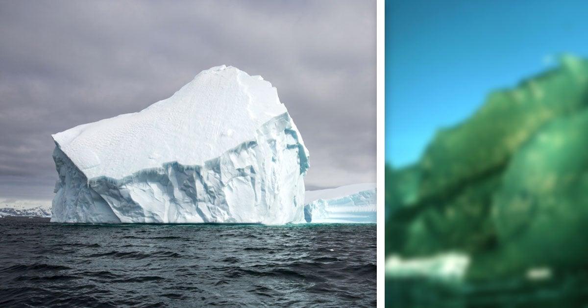 ¿Qué son los icebergs verdes y por qué son más importantes para el ambiente de lo que imaginas?
