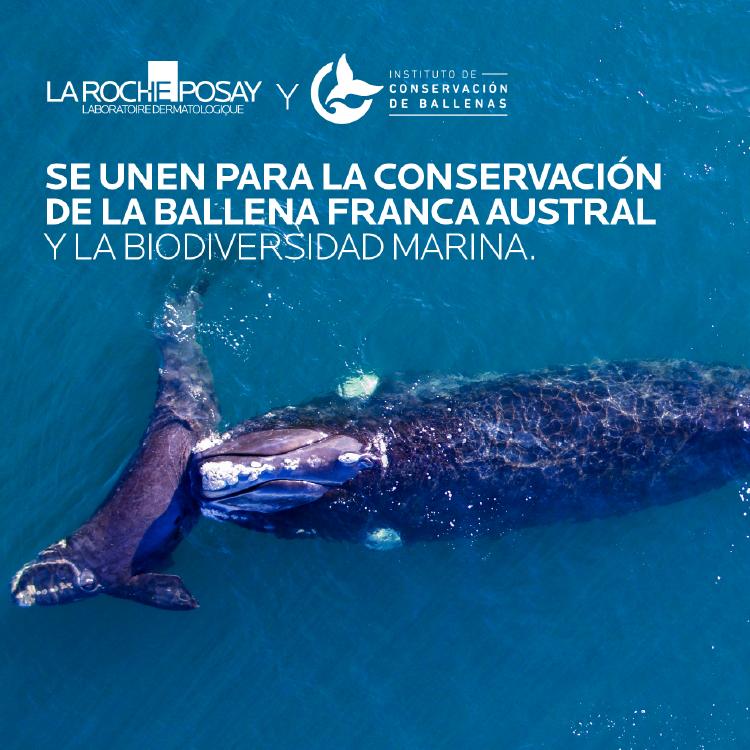 La Roche-Posay se une al Instituto de Conservación de Ballenas
