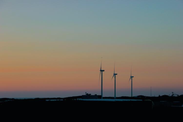 Bonos verdes para financias proyectos ambientales