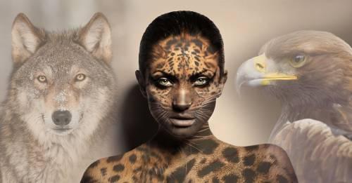 Cómo saber cuál es tu animal de poder que acompaña la sabiduría de tu alma