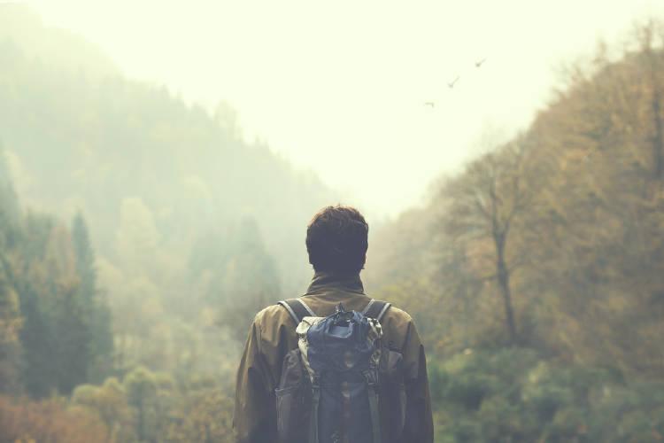 Contacto con la naturaleza: 20 minutos son suficientes para bajar el estrés