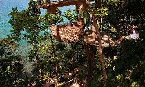 Cena sobre los árboles: cocina a nuevas alturas