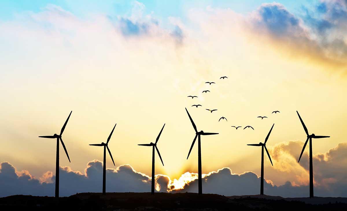 Conoce el estado australiano que ahora funciona con energía 100% renovable