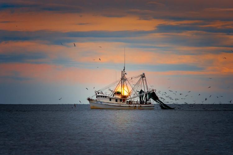 Pesca de arrastre VH