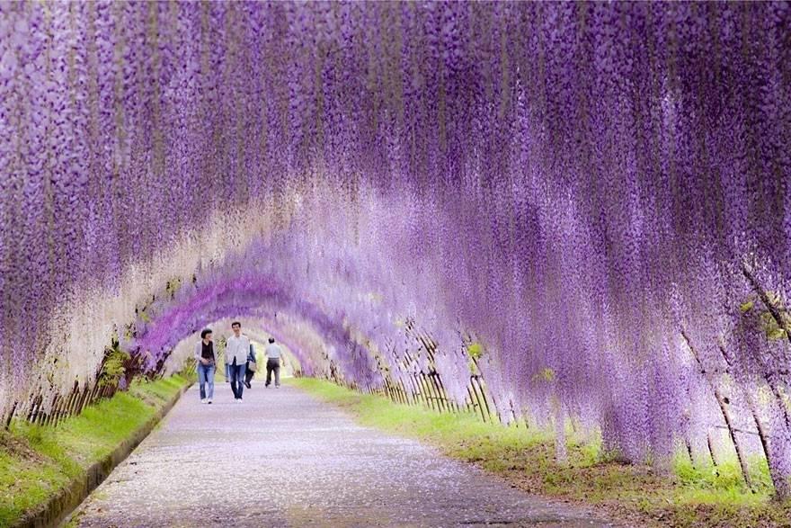 11 impresionantes túneles creados por la naturaleza