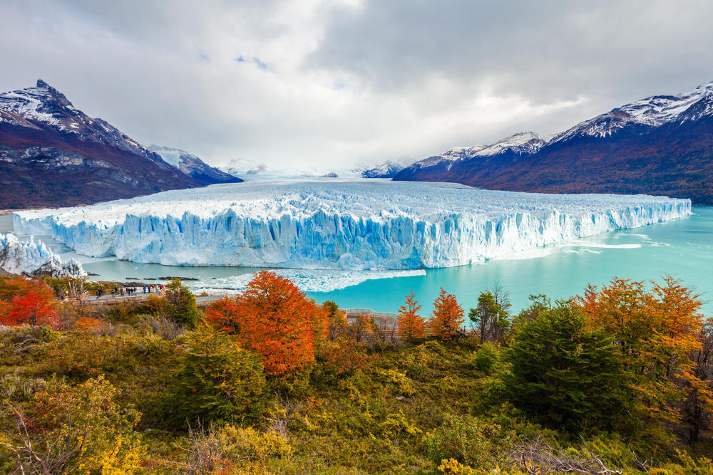 Polémica en el sur argentino por una ley que prohíbe proteger la naturaleza