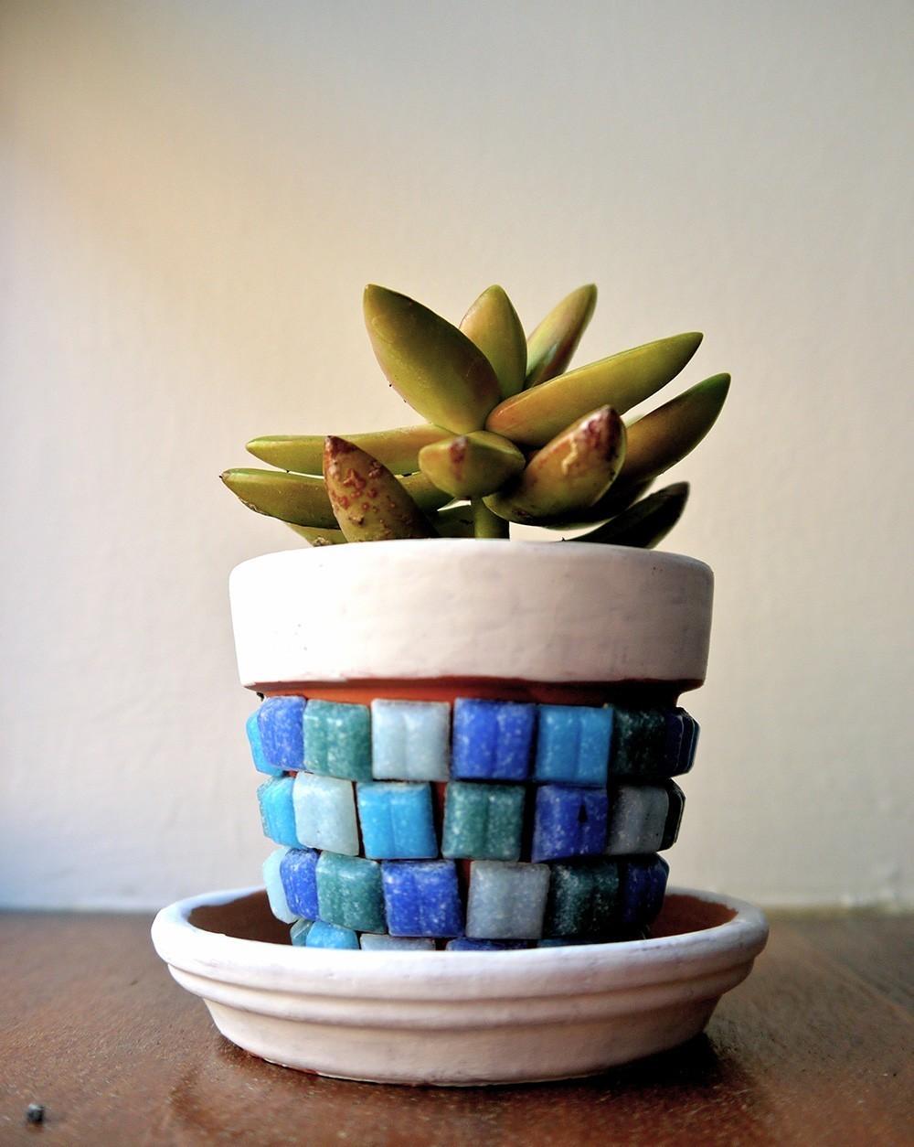 C mo hacer mosaiquismo para decorar objetos la casa y el for Diseno de jardines para el hogar