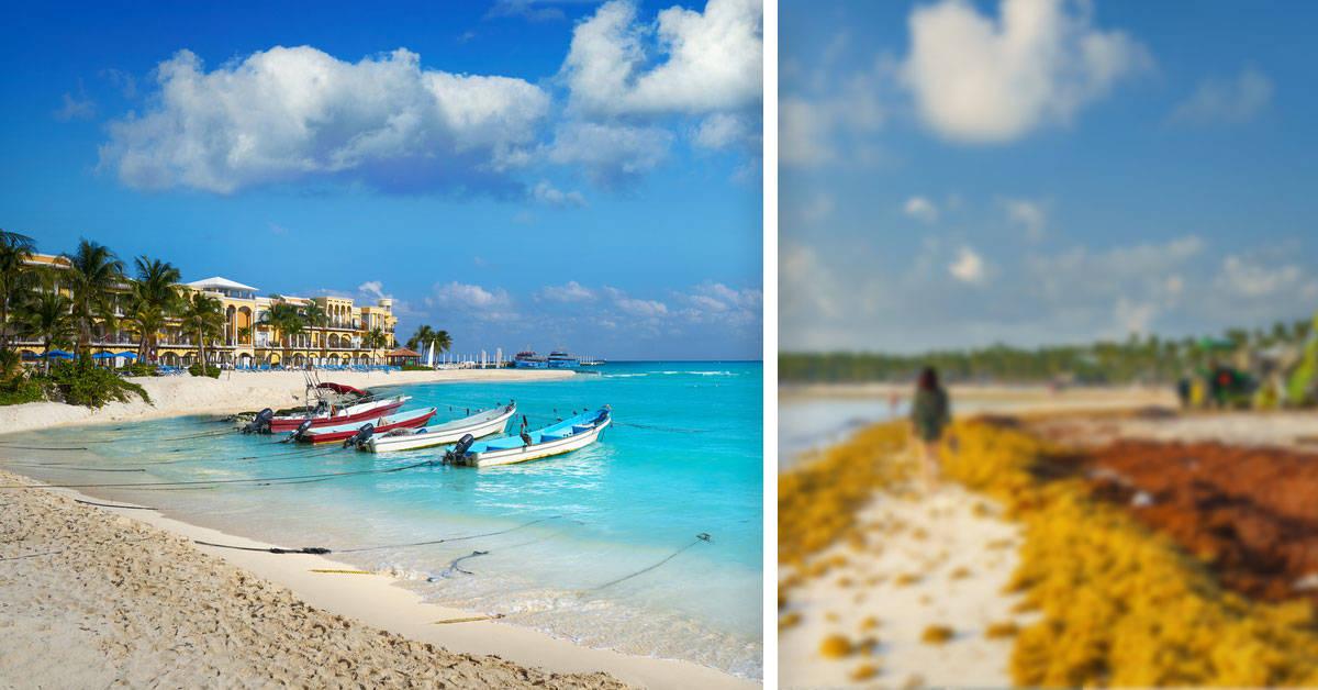 Playa del Carmen: el paraíso mexicano que está amenazado